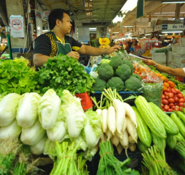 The Difference Between the U.S. and Thailand's Sustainability Scenes